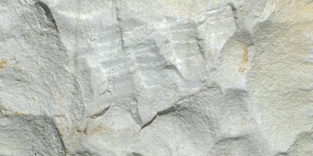 White Lime Stone Rough Cut